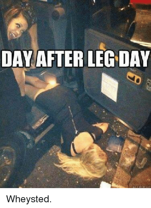 Leg,  Legs, and Legs-Day: DAY AFTER LEG DAY Wheysted.