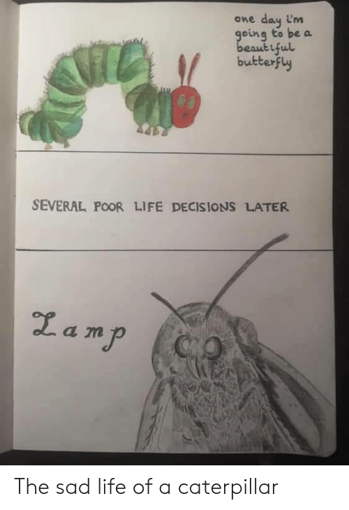 Butterfly: day im  going to be a  beautiful  butterfly  One  SEVERAL POOR LIFE DECISIONS LATER  Zamp  CO The sad life of a caterpillar