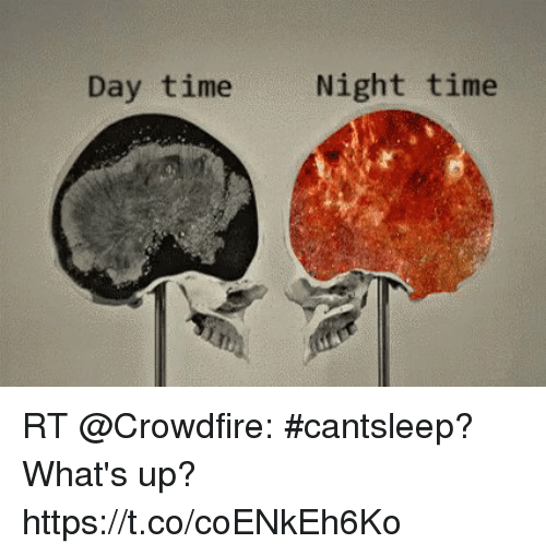 Memes, Time, and 🤖: Day time  Night time RT @Crowdfire: #cantsleep?  What's up? https://t.co/coENkEh6Ko