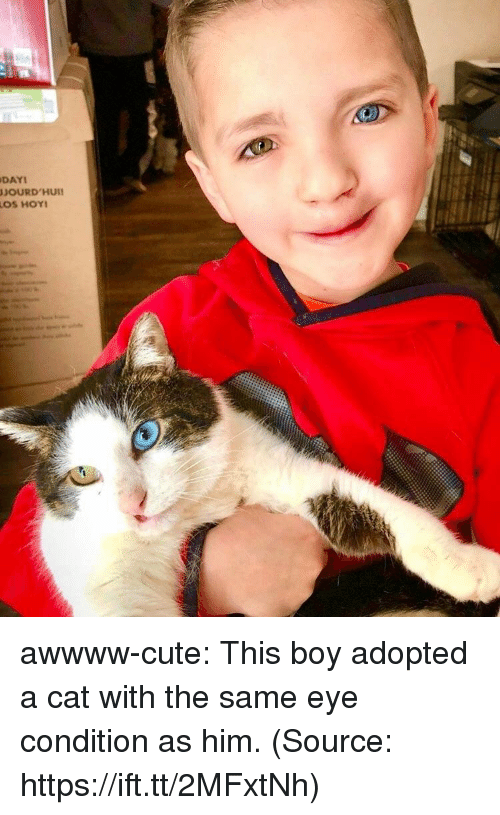 Cute, Tumblr, and Blog: DAYI  JOURD'HUI awwww-cute:  This boy adopted a cat with the same eye condition as him. (Source: https://ift.tt/2MFxtNh)