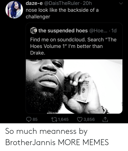 "Dank, Drake, and Hoe: daze-e @DaisThe Ruler 20h  nose look like the backside of a  challenger  the suspended hoes @Hoe.. 1d  Find me on soundcloud. Search ""The  Hoes Volume 1"" I'm better than  Drake.  11,645  3,856  85 So much meanness by BrotherJannis MORE MEMES"