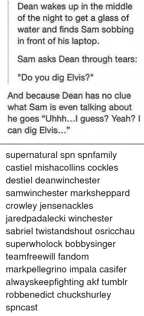 """Memes, Tumblr, and Yeah: Dean wakes up in the middle  of the night to get a glass of  water and finds Sam sobbing  in front of his laptop.  Sam asks Dean through tears:  """"Do you dig Elvis?""""  And because Dean has no clue  what Sam is even talking about  he goes """"Uhhh...I guess? Yeah? I  can dig Elvis.."""" supernatural spn spnfamily castiel mishacollins cockles destiel deanwinchester samwinchester marksheppard crowley jensenackles jaredpadalecki winchester sabriel twistandshout osricchau superwholock bobbysinger teamfreewill fandom markpellegrino impala casifer alwayskeepfighting akf tumblr robbenedict chuckshurley spncast"""