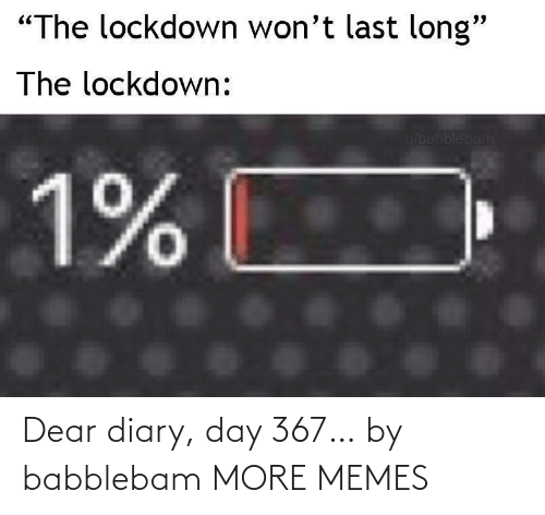 dear: Dear diary, day 367… by babblebam MORE MEMES