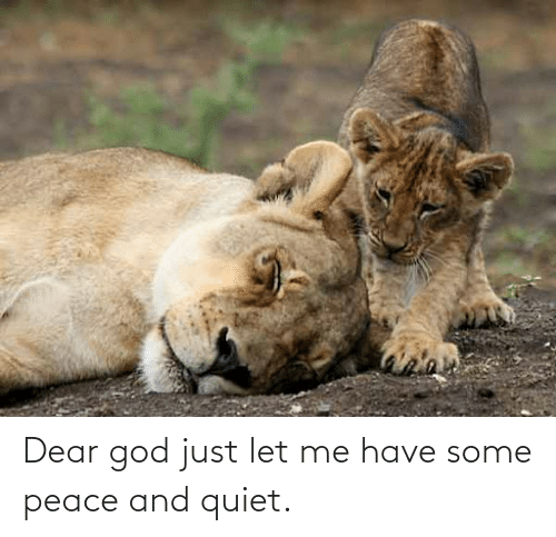 let me: Dear god just let me have some peace and quiet.