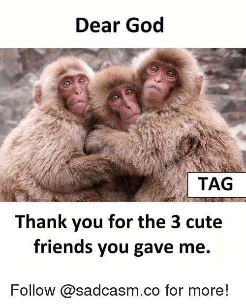 Cute, Friends, and God: Dear God  TAG  Thank you for the 3 cute  friends you gave me. Follow @sadcasm.co for more!