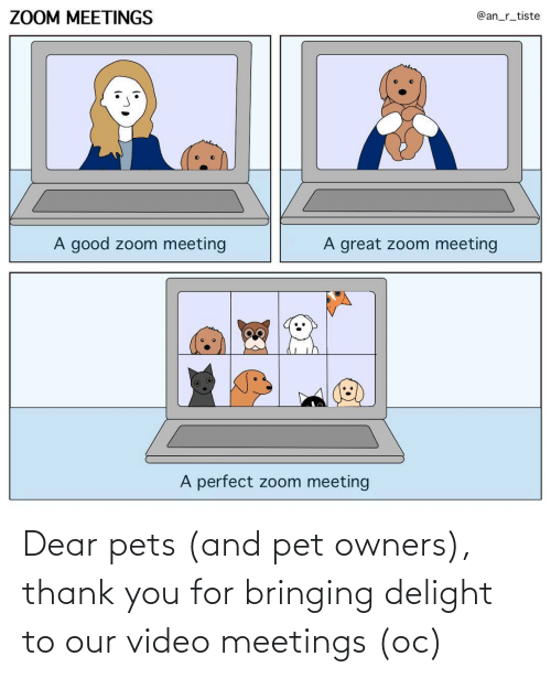 dear: Dear pets (and pet owners), thank you for bringing delight to our video meetings (oc)