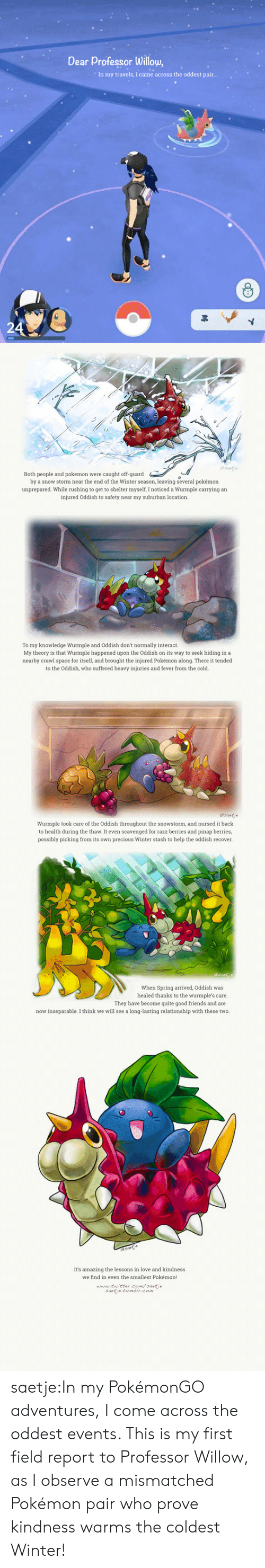 willow: Dear Professor Willow,  In my travels, I came across the oddest pair..   (s  esntde  Both people and pokemon were caught off-guard  by a snow storm near the end of the Winter season, leaving several pokémon  unprepared. While rushing to get to shelter myself, I noticed a Wurmple carrying an  injured Oddish to safety near my suburban location.  To my knowledge Wurmple and Oddish don't normally interact.  My theory is that Wurmple happened upon the Oddish on its way to seek hiding in a  nearby crawl space for itself, and brought the injured Pokémon along. There it tended  to the Oddish, who suffered heavy injuries and fever from the cold.   Wurmple took care of the Oddish throughout the snowstorm, and nursed it back  to health during the thaw. It even scavenged for razz berries and pinap berries,  possibly picking from its own precious Winter stash to help the oddish recover.  When Spring arrived, Oddish was  healed thanks to the wurmple's care.  They have become quite good friends and are  now inseparable. I think we will see a long-lasting relationship with these two.   It's amazing the lessons in love and kindnes  we find in even the smallest Pokémon!  www tuittercom/santie  saetie tumblr.com saetje:In my PokémonGO adventures, I come across the oddest events. This is my first field report to Professor Willow, as I observe a mismatched Pokémon pair who prove kindness warms the coldest Winter!