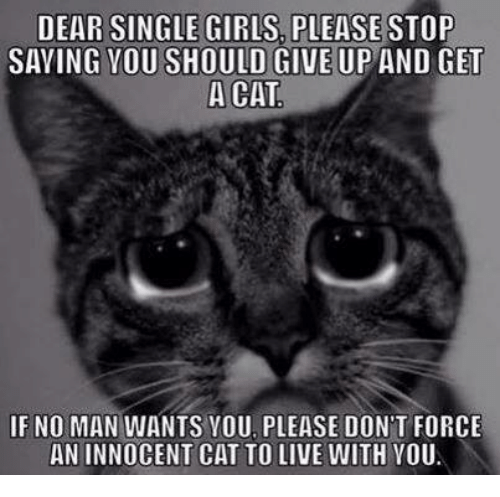 girl please: DEAR SINGLE GIRLS PLEASE STOP  SAVING YOU SHOULD GIVE UP AND  GET  A CAT  IF NO MAN WANTS YOU PLEASE DON'T FORCE  ANINNOCENT CAT TO LIVE WITH YOU