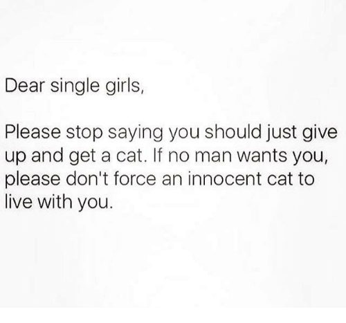 girl please: Dear single girls,  Please stop saying you should just give  up and get a cat. If no man wants you,  please don't force an innocent cat to  live with you.