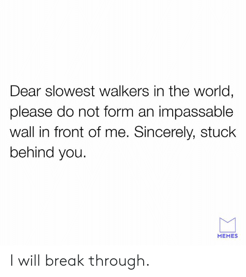 walkers: Dear slowest walkers in the world,  please do not form an impassable  wall in front of me. Sincerely, stuck  behind you.  MEMES I will break through.