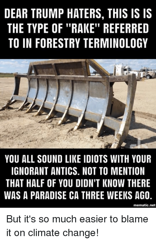 """Ignorant, Memes, and Paradise: DEAR TRUMP HATERS, THIS IS IS  THE TYPE OF """"RAKE"""" REFERRED  TO IN FORESTRY TERMINOLOGY  YOU ALL SOUND LIKE IDIOTS WITH YOUR  IGNORANT ANTICS. NOT TO MENTION  THAT HALF OF YOU DIDN'T KNOW THERE  WAS A PARADISE CA THREE WEEKS AG0,  mematic.net But it's so much easier to blame it on climate change!"""