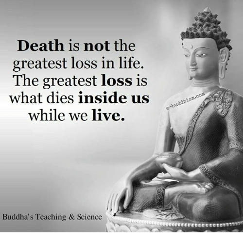 Life, Memes, and Death: Death is not the  greatest loss in life.  The greatest loss is  what dies inside us  while we live.  Buddha's Teaching & Science  com
