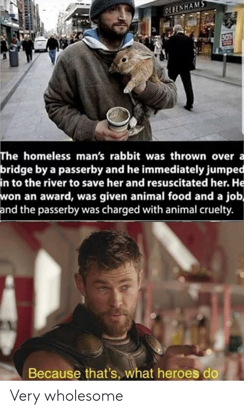 Food, Homeless, and Animal: DEBENHAMS  30  The homeless man's rabbit was thrown over  bridge by a passerby and he immediately jumped  in to the river to save her and resuscitated her. He  won an award, was given animal food and a job,  and the passerby was charged with animal cruelty.  a  Because that's, what heroes do Very wholesome