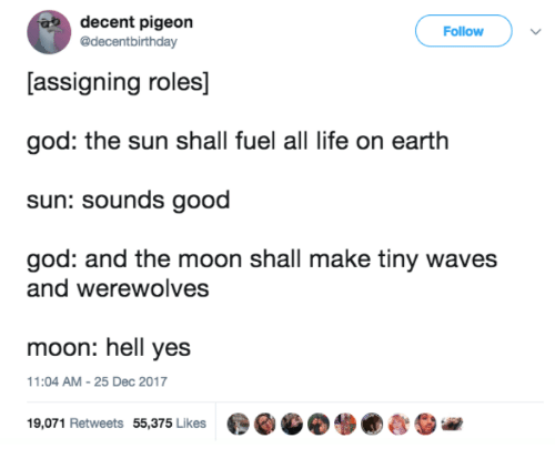 God, Life, and Waves: decent pigeon  @decentbirthday  Follow  [assigning roles]  god: the sun shall fuel all life on earth  sun: sounds good  god: and the moon shall make tiny waves  and werewolves  moon: hell yes  1:04 AM-25 Dec 2017  19,071 Retweets 55,375 Likes  ●GGO. ●むSie