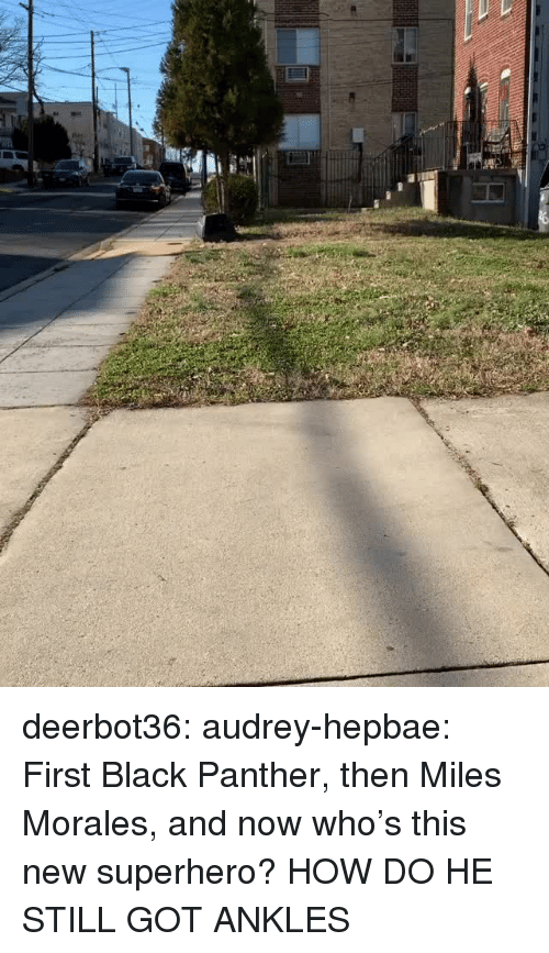 Superhero, Target, and Tumblr: deerbot36:  audrey-hepbae: First Black Panther, then Miles Morales, and now who's this new superhero?  HOW DO HE STILL GOT ANKLES