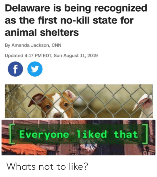 cnn.com, Animal, and Sun: Delaware is being recognized  as the first no-kill state for  animal shelters  By Amanda Jackson, CNN  Updated 4:17 PM EDT, Sun August 11, 2019  f  Everyone 1iked that Whats not to like?
