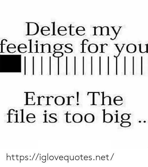 Net, Big, and You: Delete my  feelings for you  Error! The  file is too big https://iglovequotes.net/