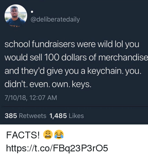 Anaconda, Facts, and Lol: @deliberatedaily  school fundraisers were wild lol you  would sell 100 dollars of merchandise  and they'd give you a keychain. you.  didn't. even. own. keys.  7/10/18, 12:07 AM  385 Retweets 1,485 Likes FACTS! 😩😂 https://t.co/FBq23P3rO5