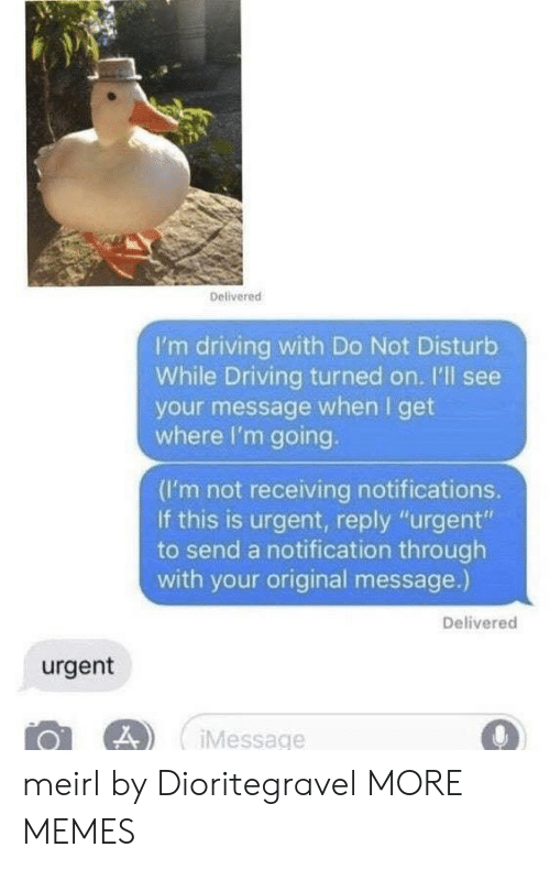"Dank, Driving, and Memes: Delivered  I'm driving with Do Not Disturb  While Driving turned on. I'll see  your message when I get  where I'm going.  (I'm not receiving notifications.  If this is urgent, reply ""urgent""  to send a notification through  with your original message.)  Delivered  urgent  Message meirl by Dioritegravel MORE MEMES"