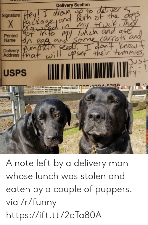 Funny, Via, and Man: Delivery Section  Signature! Hey T WDR  yer  Name  Delivery Pum  Address mat  ome orrots  set their immies  vs+  USPS A note left by a delivery man whose lunch was stolen and eaten by a couple of puppers. via /r/funny https://ift.tt/2oTa80A