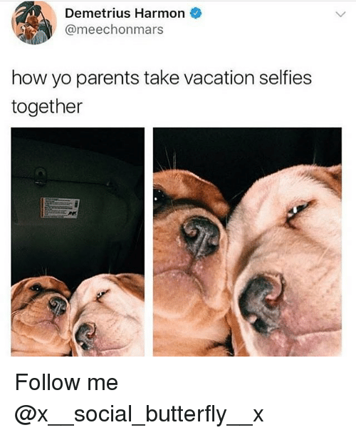 Memes, Parents, and Yo: Demetrius Harmon  @meechonmars  how yo parents take vacation selfies  together Follow me @x__social_butterfly__x