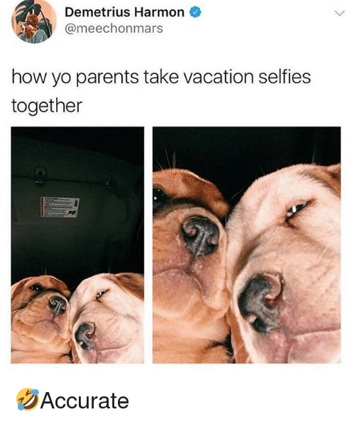 Memes, Parents, and Yo: Demetrius Harmon  @meechonmars  how yo parents take vacation selfies  together 🤣Accurate