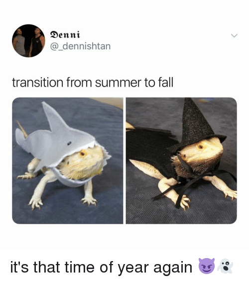 Fall, Summer, and Time: Denni  @_dennishtan  transition from summer to fall it's that time of year again 😈👻