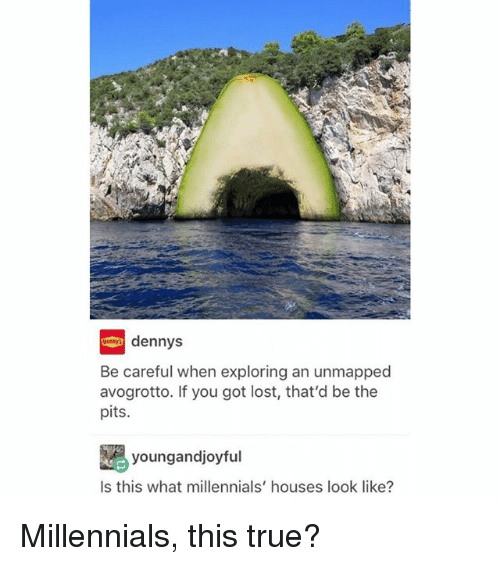 Denny's, Memes, and True: dennys  Be careful when exploring an unmapped  avogrotto. If you got lost, that'd be the  pits.  youngandjoyful  Is this what millennials' houses look like? Millennials, this true?