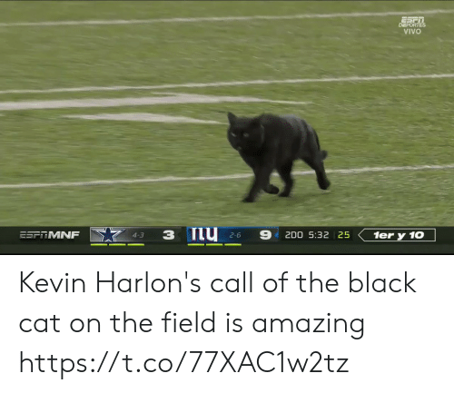 2 6: DEPORTES  VIVO  ESFRMNF  2D0 5:32 25  1er y 10  4-3  2-6 Kevin Harlon's call of the black cat on the field is amazing https://t.co/77XAC1w2tz