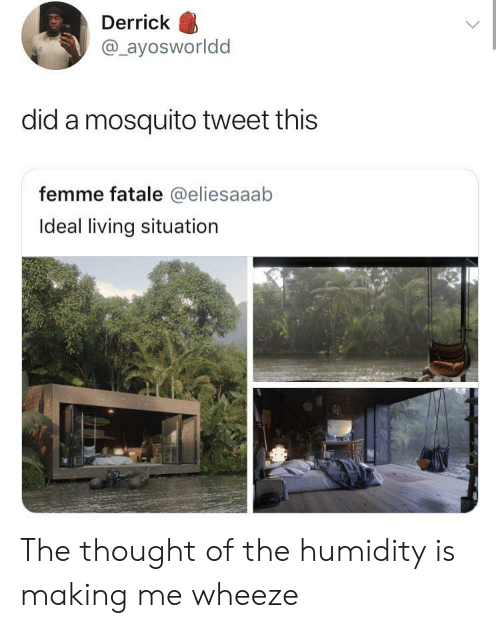 Living, Thought, and Mosquito: Derrick  @ayosworldd  did a mosquito tweet this  femme fatale @eliesaaab  Ideal living situation The thought of the humidity is making me wheeze