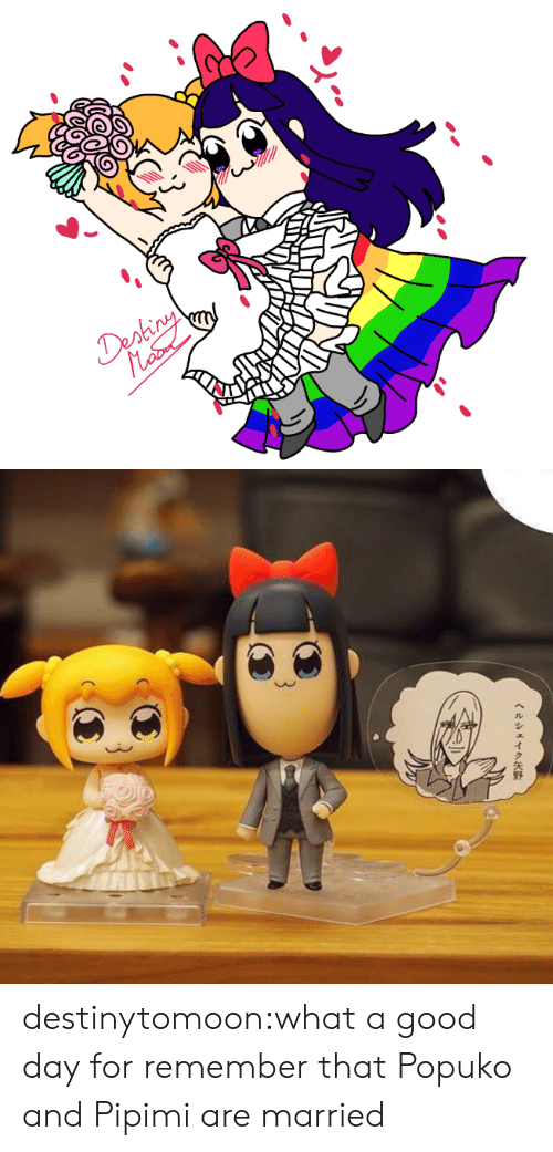 Target, Tumblr, and Blog: Deshiny destinytomoon:what a good day for remember that Popuko and Pipimi are married