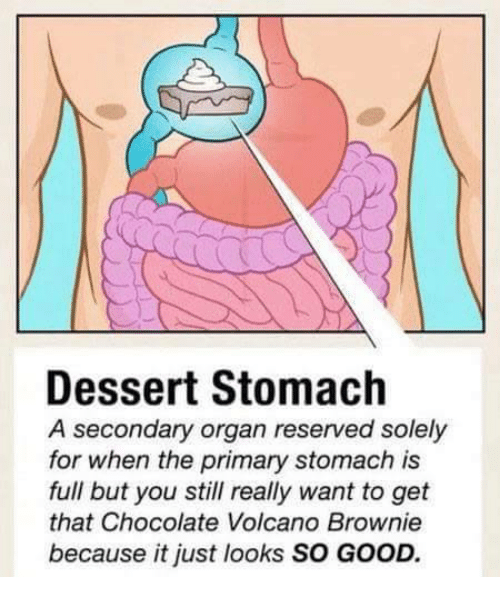 Organizer: Dessert Stomach  A secondary organ reserved solely  for when the primary stomach is  full but you still really want to get  that Chocolate Volcano Brownie  because it just looks SO GOOD.