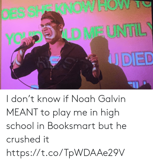 Memes, School, and Noah: DESSHRRNOW  OW  D MEUNTIL  YOW P  UDED I don't know if Noah Galvin MEANT to play me in high school in Booksmart but he crushed it https://t.co/TpWDAAe29V