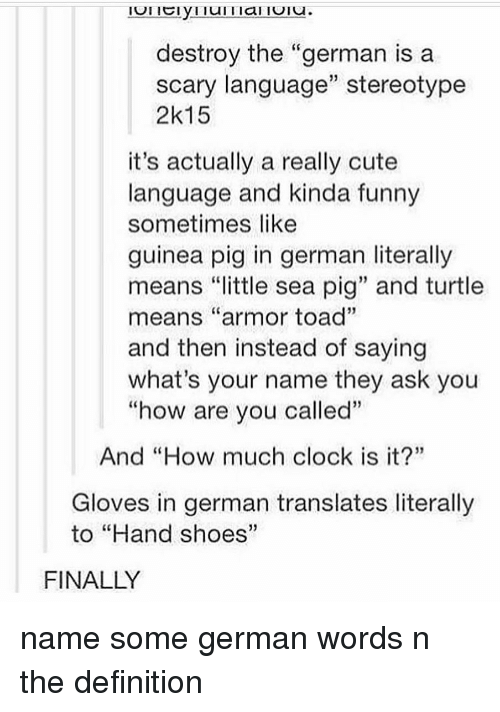 """Clock, Cute, and Funny: destroy the """"german is a  scary language"""" stereotype  2k15  it's actually a really cute  language and kinda funny  sometimes like  guinea pig in german literally  means """"little sea pig"""" and turtle  means """"armor toad""""  and then instead of saying  what's your name they ask you  """"how are vou called""""  And """"How much clock is it?""""  Gloves in german translates literally  to """"Hand shoes""""  FINALLY name some german words n the definition"""