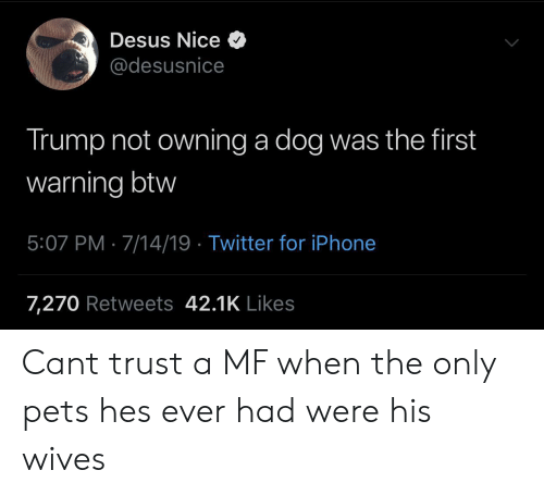 Iphone, Twitter, and Pets: Desus Nice  @desusnice  Trump not owning a dog was the first  warning btw  5:07 PM 7/14/19 Twitter for iPhone  7,270 Retweets 42.1K Likes Cant trust a MF when the only pets hes ever had were his wives