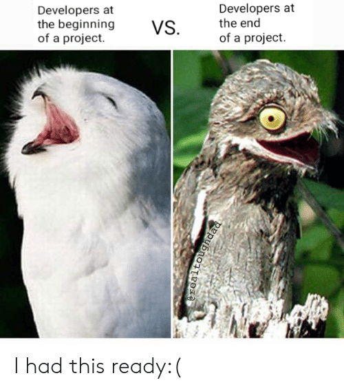 Project, This, and The End: Developers at  the end  of a project.  Developers at  the beginning  of a project.  VS I had this ready:(