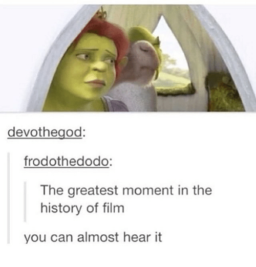 Memes, History, and Film: devothegod:  frodothedodo:  The greatest moment in the  history of film  you can almost hear it