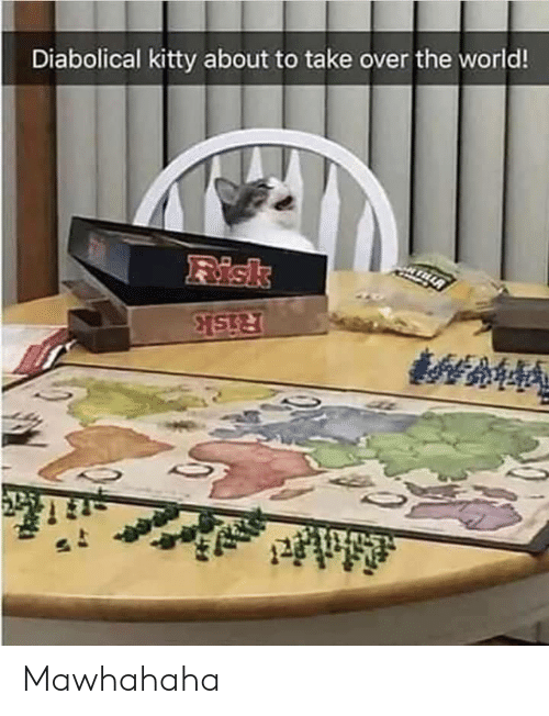 World, The World, and Kitty: Diabolical kitty about to take over the world!  Risk  Risk Mawhahaha