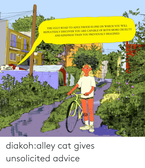 unsolicited: diakoh:alley cat gives unsolicited advice
