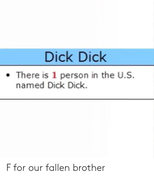 Dick, Dank Memes, and Brother: Dick Dick  There is 1 person in the U.S.  named Dick Dick F for our fallen brother