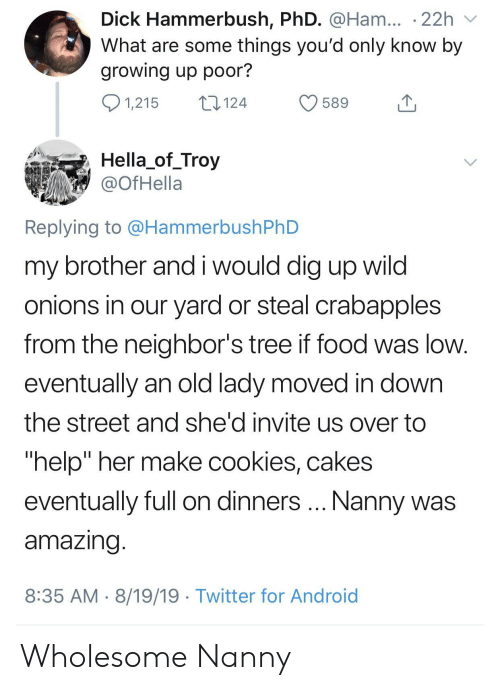 """cakes: Dick Hammerbush, PhD. @Ham... .22h  What are some things you'd only know by  growing up poor?  1,215  124  589  Hella_of_Troy  @OfHella  Replying to @HammerbushPhD  my brother and i would dig up wild  onions in our yard or steal crabapples  from the neighbor's tree if food was low.  eventually an old lady moved in down  the street and she'd invite us over to  """"help"""" her make cookies, cakes  Nanny was  eventually full on dinners  amazing.  8:35 AM 8/19/19 Twitter for Android Wholesome Nanny"""