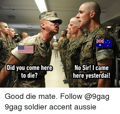 9gag, Memes, and Good: Did you come here  to die?  No Sir! I came  here yesterdai! Good die mate. Follow @9gag 9gag soldier accent aussie