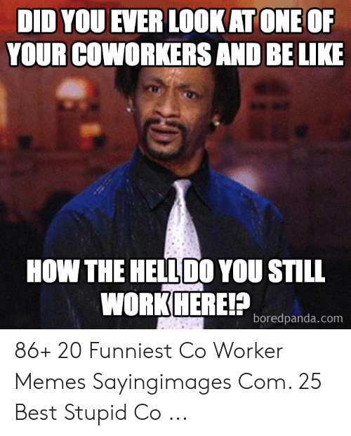 Be Like, Memes, and Best: DID YOU EVER LOOKAT ONE OF  YOUR COWORKERS AND  BE LIKE  HOW THE HELLDO YOU STILL  WORKHEREP  boredpanda.com 86+ 20 Funniest Co Worker Memes Sayingimages Com. 25 Best Stupid Co ...