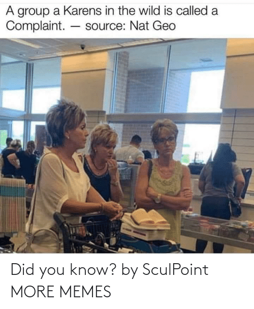 You Know: Did you know? by SculPoint MORE MEMES