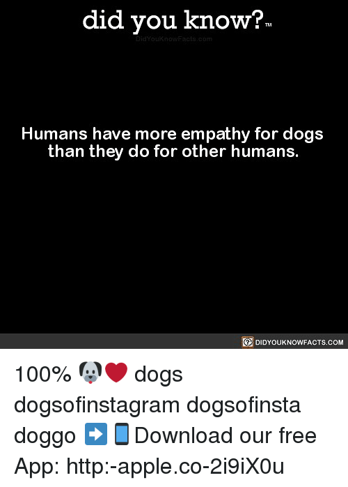 Anaconda, Apple, and Dogs: did you know?  Humans have more empathy for dogs  than they do for other humans.  DIDYOUKNOWFACTS.CoM 100% 🐶❤️ dogs dogsofinstagram dogsofinsta doggo ➡📱Download our free App: http:-apple.co-2i9iX0u