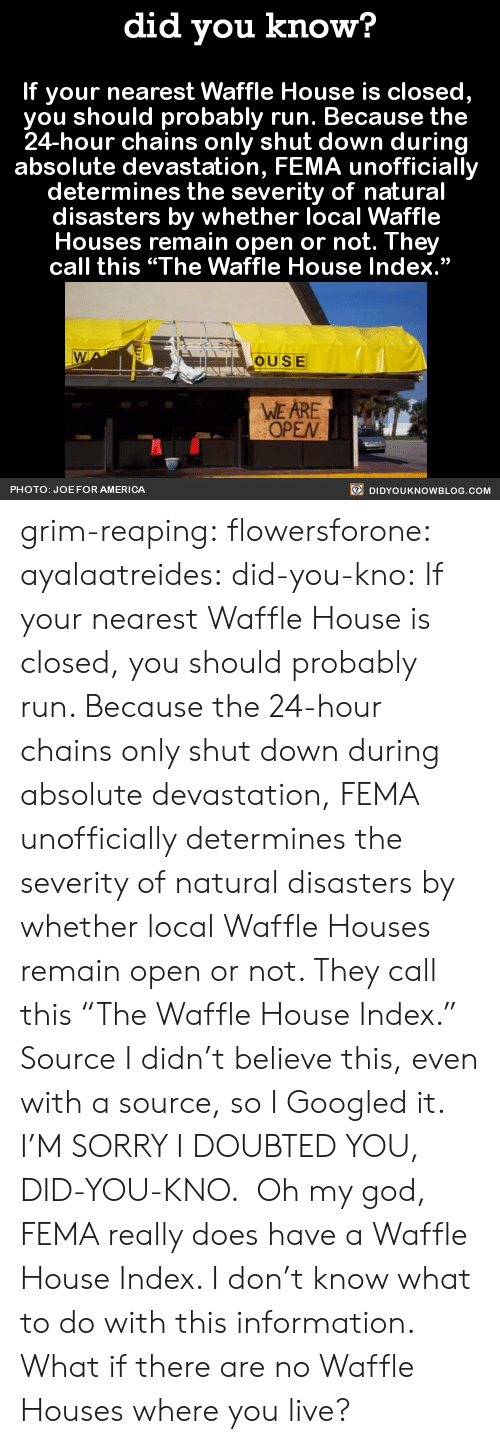 """America, God, and Oh My God: did you know?  If your nearest Waffle House is closed,  you should probably run. Because the  24-hour chains only shut down during  absolute devastation, FEMA unofficially  determines the severity of natural  disasters by whether local Waffle  Houses remain open or not. They  call this """"The Waffle House Index.""""  OUSE  WE ARE  OPEN  PHOTO: JOE FOR AMERICA  DIDYOUKNOWBLOG.COM grim-reaping: flowersforone:   ayalaatreides:  did-you-kno: If your nearest Waffle House is closed,  you should probably run. Because the  24-hour chains only shut down during  absolute devastation, FEMA unofficially  determines the severity of natural  disasters by whether local Waffle  Houses remain open or not. They  call this """"The Waffle House Index.""""  Source I didn't believe this, even with a source, so I Googled it. I'M SORRY I DOUBTED YOU, DID-YOU-KNO. Oh my god, FEMA really does have a Waffle House Index. I don't know what to do with this information.  What if there are no Waffle Houses where you live?"""