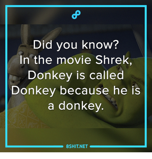donkeys: Did you know?  In the movie Shrek,  Donkey is called  Donkey because he is  a donkey.  8SHIT.NET