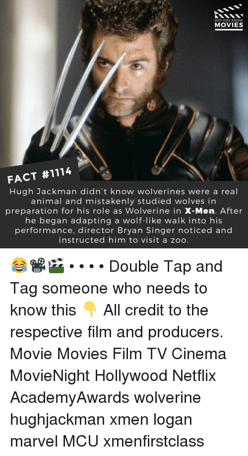 Memes, Movies, and Netflix: DID YOU KNOW  MOVIES  FACT #1114  Hugh Jackman didn't know wolverines were a real  animal and mistakenly studied wolves in  preparation for his role as Wolverine in X-Men. After  he began adapting a wolf-like walk into his  performance, director Bryan Singer noticed and  instructed him to visit a zoo 😂📽️🎬 • • • • Double Tap and Tag someone who needs to know this 👇 All credit to the respective film and producers. Movie Movies Film TV Cinema MovieNight Hollywood Netflix AcademyAwards wolverine hughjackman xmen logan marvel MCU xmenfirstclass