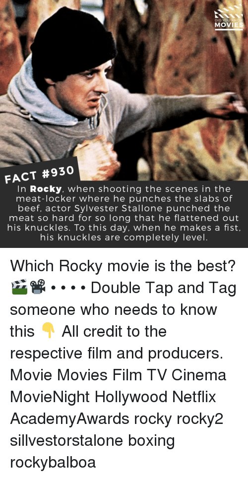 Beef, Boxing, and Memes: DID YOU KNOW  MOVIES  FACT #930  In Rocky, when shooting the scenes in the  meat-locker where he punches the slabs of  beef, actor Sylvester Stallone punched the  meat so hard for so long that he flattened out  nis knuckles. To this day, when he makes a fist  his knuckles are completely level Which Rocky movie is the best? 🎬📽️ • • • • Double Tap and Tag someone who needs to know this 👇 All credit to the respective film and producers. Movie Movies Film TV Cinema MovieNight Hollywood Netflix AcademyAwards rocky rocky2 sillvestorstalone boxing rockybalboa