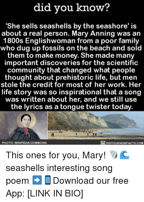 "Memes, Wikipedia, and Beach: did you know?  ""She sells seashells by the seashore' is  about a real person. Mary Anning was an  1800s Englishwoman from a poor family  who dug up fossils on the beach and sold  them to make money. She made many  important discoveries for the scientific  community that changed what people  thought about prehistoric life, but men  stole the credit for most of her work. Her  life story was so inspirational that a song  was written about her, and we still use  the lyrics as a tongue twister today  O DIDYOUKNOwFACTs.coM  PHOTO: WIKIPEDIA COMMONS This ones for you, Mary! 🐚🌊 seashells interesting song poem ➡📱Download our free App: [LINK IN BIO]"
